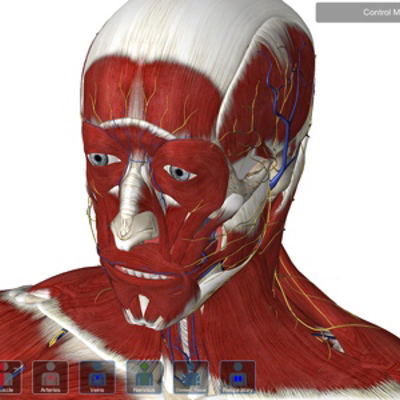 Essential Anatomy Ipad App Reviewed Recommended