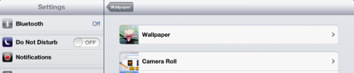 iPad Settings for viewing Wallpapers